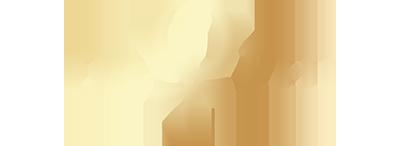 Dr Phi logo in gold